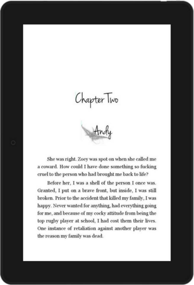 Integrity Formatting Kindle Example